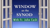 Synod_youtube_thumb copy