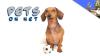 Pets on NET