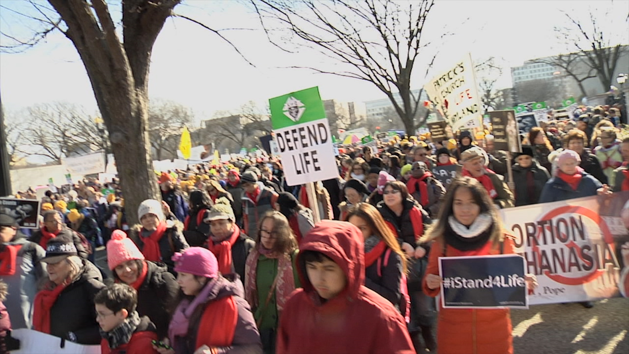 Diocese of Brooklyn March for Life 2015