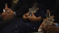 Shining Stars Awards 2017 (Part 2)