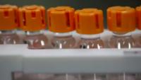 White House Coronavirus Task Force Warns of Nationwide Health Risks This Winter
